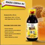Agen Madu Cerna Jakarta Hub Andi 0856-1121-469