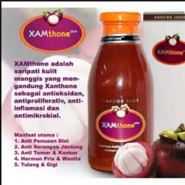 Jual Xamthone Plus di Bali Hub Bp Andi 0856-1121-469