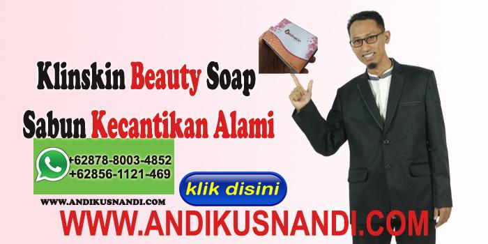 Klinskin Beauty Soap Sabun Kecantikan Alami
