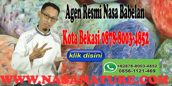 Agen Resmi Nasa Babelan Kota Bekasi 0878-8003-4852
