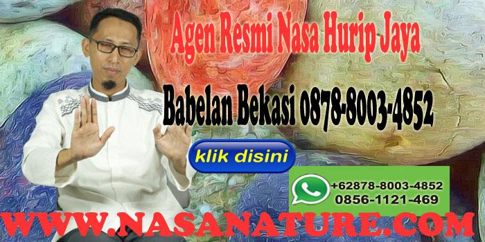 Agen Resmi Nasa Hurip Jaya Babelan Bekasi 0878-8003-4852