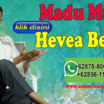 Madu Murni Hevea Bekasi