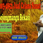 WA 0878-8003-4852 Jual Celana Sunat di Bojongmangu Bekasi