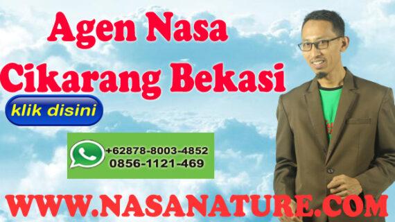 WA 0878-8003-4852 Agen Nasa Cikarang Bekasi