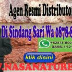 Agen Resmi Distributor Nasa Di Sindangsari Wa 0878-8003-4852