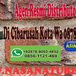 Agen Resmi Distributor Nasa Di Cibarusah Kota Wa 0878-8003-4852