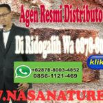 Agen Resmi Distributor Nasa Di Ridogalih Wa 0878-8003-4852