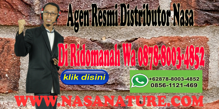 Agen Resmi Distributor Nasa Di Ridomanah Wa 0878-8003-4852