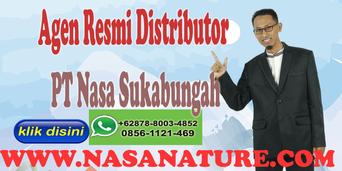 Agen Resmi Distributor PT Nasa Sukabungah Hub 0878-8003-4852