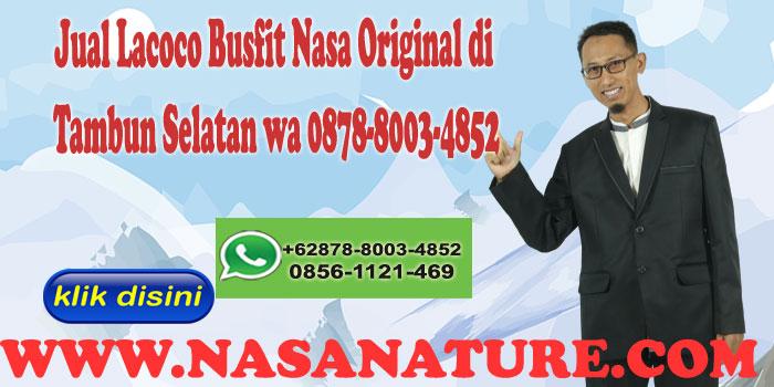 Jual Lacoco Busfit Nasa Original di Tambun Selatan wa 0878-8003-4852