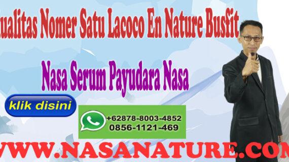 Kualitas Nomer Satu Lacoco En Nature Busfit Nasa Serum Payudara Nasa