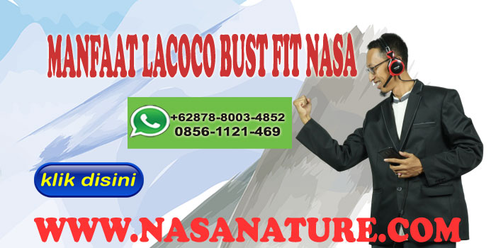 MANFAAT LACOCO BUST FIT NASAMANFAAT LACOCO BUST FIT NASA