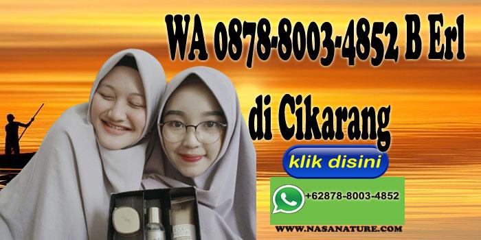 WA 0878-8003-4852 B Erl di Cikarang