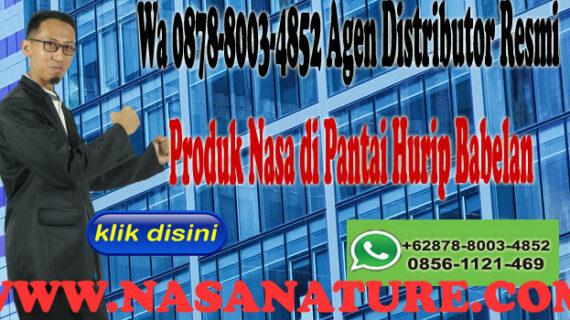 Wa 0878-8003-4852 Agen Distributor Resmi Produk Nasa di Pantai Hurip Babelan