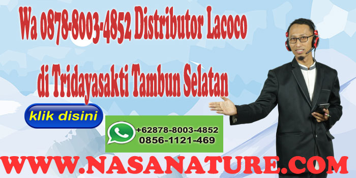 Wa 0878-8003-4852 Distributor Lacoco di Tridayasakti Tambun Selatan