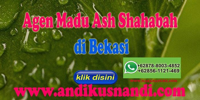 Agen Madu Ash Shahabah di Bekasi