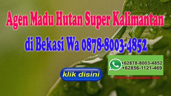Agen Madu Hutan Super Kalimantan di Bekasi Hub Wa 0878-8003-4852