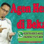 WA 0878-8003-4852 Agen Herbal Di Bekasi