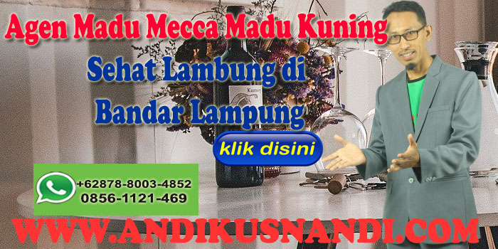 Agen Madu Mecca Madu Kuning Sehat Lambung di Bandar Lampung Wa 0878-8003-4852