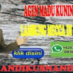 Agen Madu Mecca Madu Kuning Sehat Lambung di Bandung