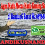 Agen Madu Mecca Madu Kuning Sehat Lambung di Bandung wa 0878-8003-4852
