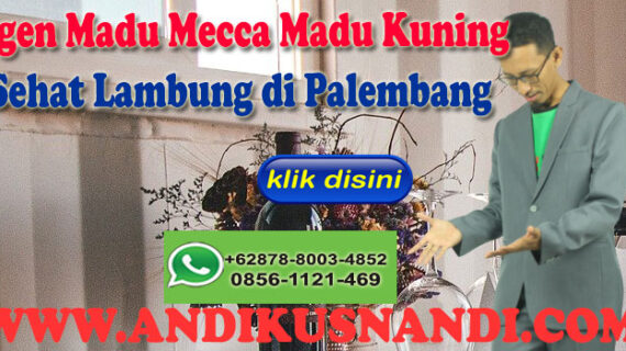 Agen Madu Mecca Madu Kuning Sehat Lambung di Palembang Wa 0878-8003-4852