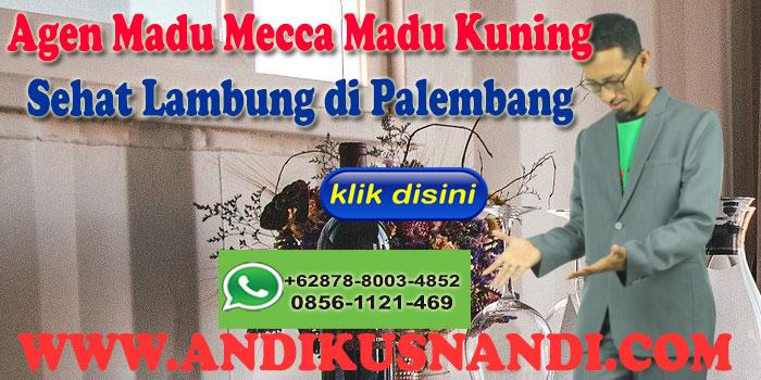 Agen Madu Mecca Madu Kuning Sehat Lambung di Palembang