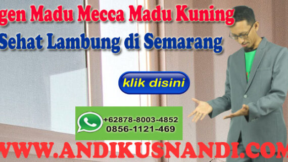 Agen Madu Mecca Madu Kuning Sehat Lambung di Semarang Wa 0878-8003-4852