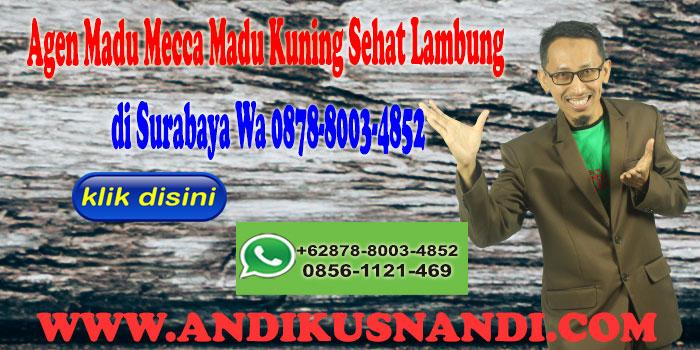 Agen Madu Mecca Madu Kuning Sehat Lambung di Surabaya WA 0878-8003-4852