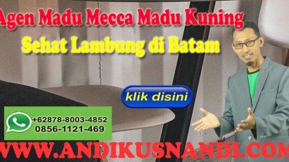 WA 0878-8003-4852 Agen Madu Mecca Madu Kuning Sehat Lambung di Batam