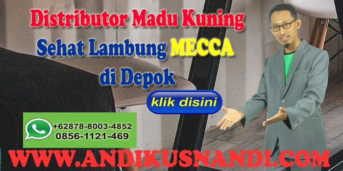 Distributor Madu Kuning Sehat Lambung MECCA di Depok