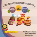 Madu Kuning Sehat Lambung Mecca isi 350gr | Obat Ampuh Untuk Lambung (FREE JAHE AMH 1 PCS)
