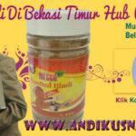 Jual Qusthul Hindi Di Bekasi Timur Hub WA 0878-8003-4852