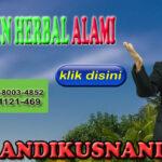 Agen Herbal Alami Hub WA 0878-8003-4852