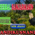 Agen Herbal Banjarmasin Hub WA 0878-8003-4852
