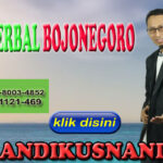 Agen Herbal Bojonegoro Hub WA 0878-8003-4852