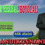 Agen Herbal Boyolali Hub WA 0878-8003-4852