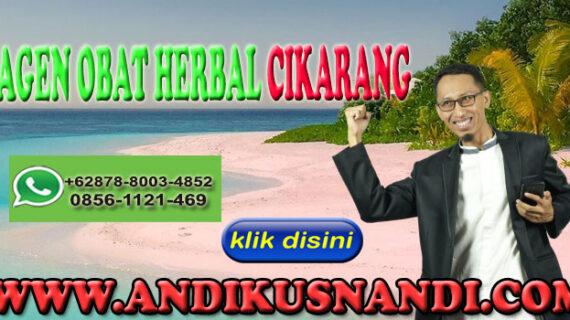 Agen Obat Herbal Cikarang Hub WA 0878-8003-4852