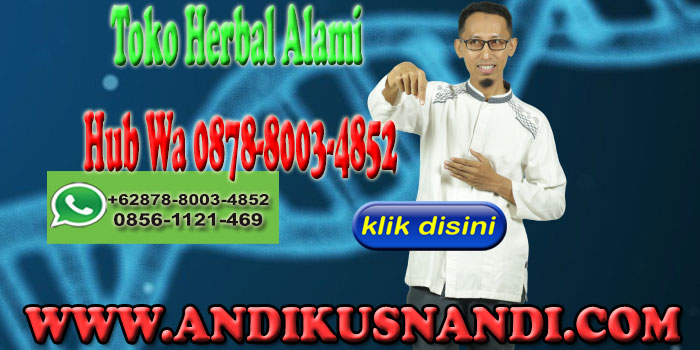 Toko Herbal Alami Hub Wa 0878-8003-4852