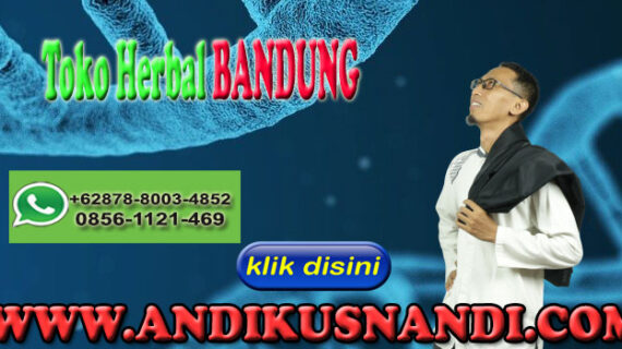 Toko Herbal Bandung Wa 0878-8003-4852